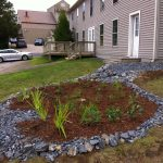 PIctured is a raingarden built by NorthWoods Stewardship Center, installed this year near the Base Lodge of Burke Mountain and designed to capture and infiltrate stormwater from rooftops